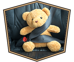 teddy bear strapped in seat belt